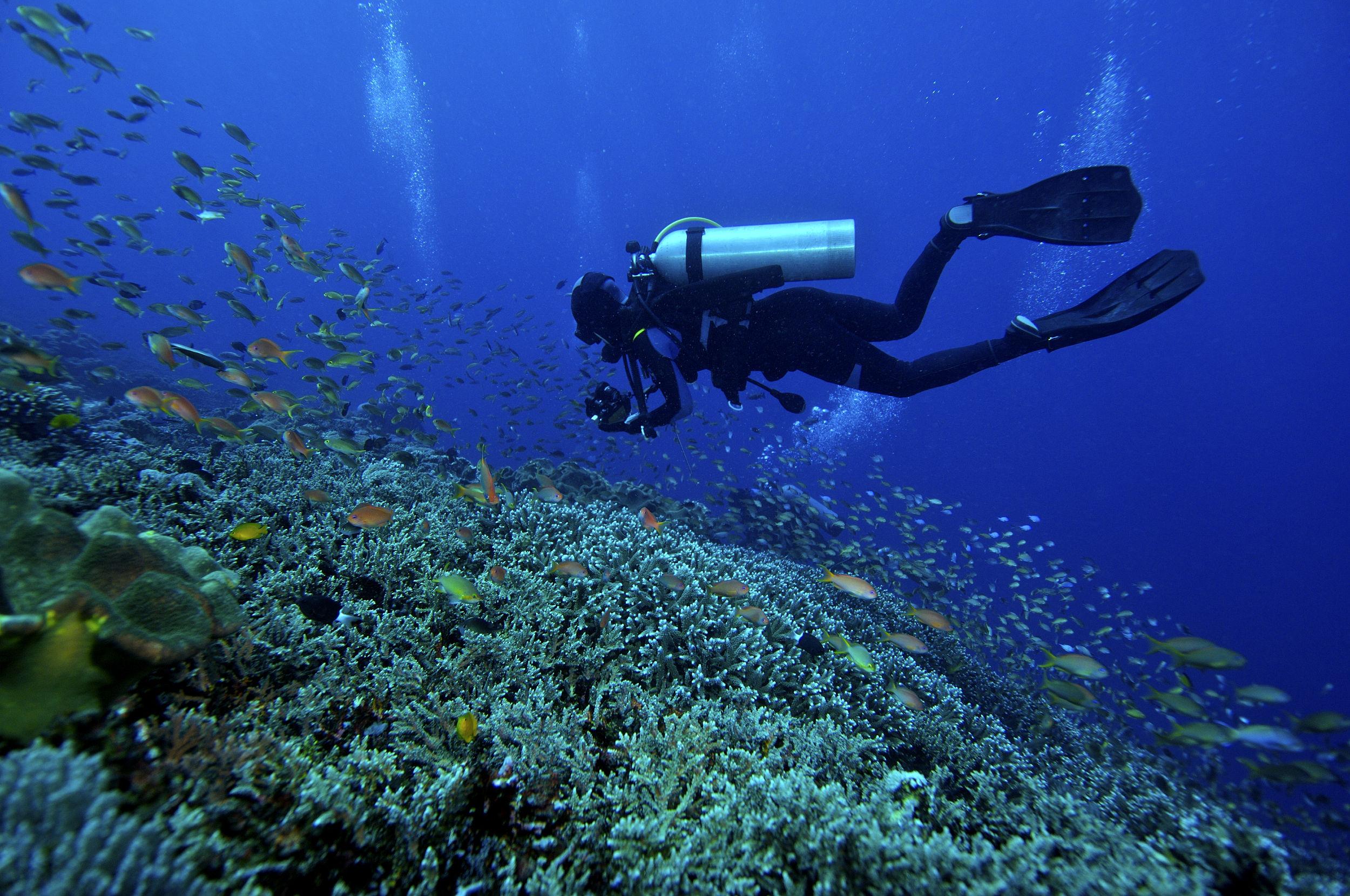 【第一次深潜需要知道哪些事?】 1、 不会游泳可以体验深潜吗? 游泳和深潜没有直接联系,只要能在水下悬浮划行200米就可以。 2、 没有潜水证书,可以进行潜水吗? 在普吉岛,只有斯米兰必须需要AOW潜水证书,其他的海岛没有潜水证书也可以深潜,看一看海底世界。 3、 体验深潜需要自带潜水装备吗? 不需要,一般情况下船公司会提供潜水服、氧气瓶等专业的设备。 4、 深潜有教练吗? 当然有,还有的潜水中心有中文教练,你可以自由选择教练来指导你深潜的相关事宜。教练会先给你上有关潜水的教程,并且带你一起下海。一般教练