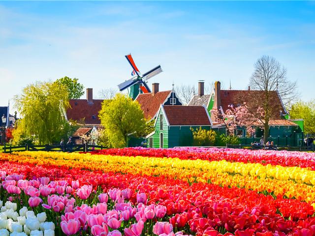 荷兰|阿姆斯特丹
